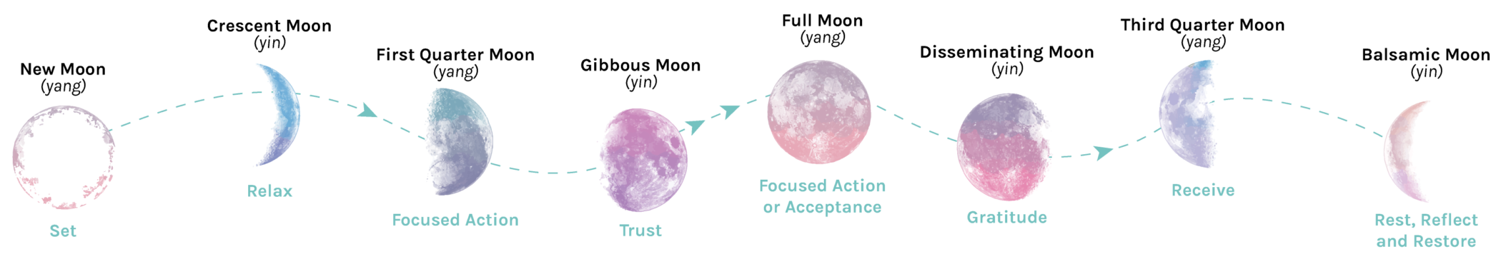 Moon Phases Banner with Labels