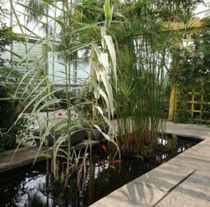 Indoor Mediterranean garden