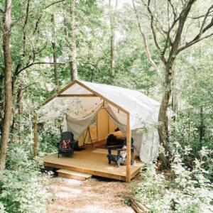 Safari-style tent in woods